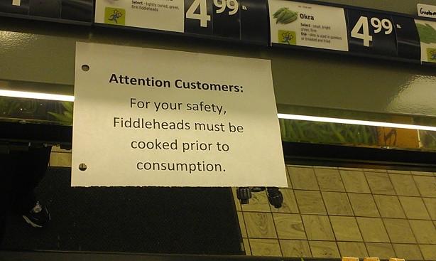 fiddlehead warning